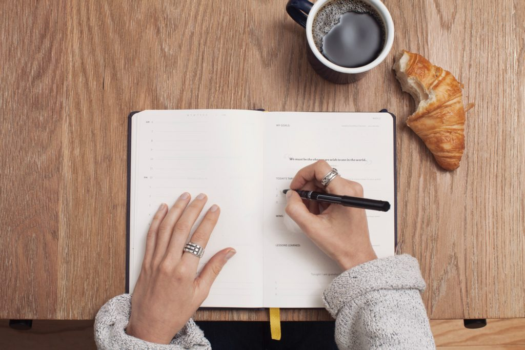 journalling system support goals progress track